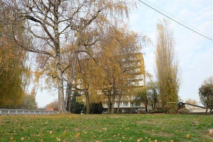 Appartement - Braine-le-Comte - #3619245-0