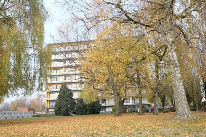 Appartement - Braine-le-Comte - #3619245-14